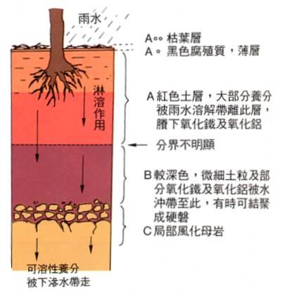 手绘土壤剖面图